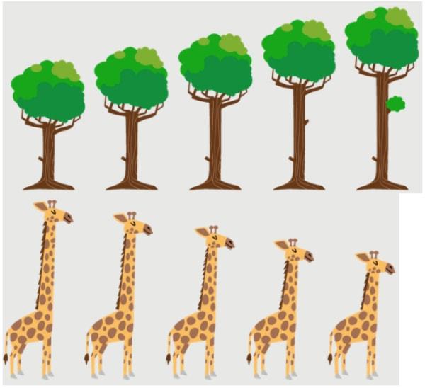 Trees sorted in ascending order Giraffes sorted in descending order