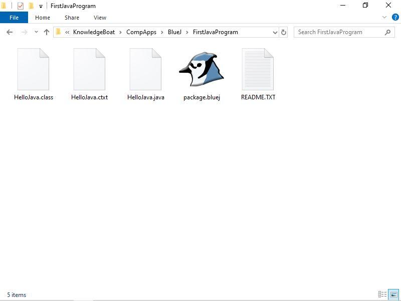 BlueJ Project Files