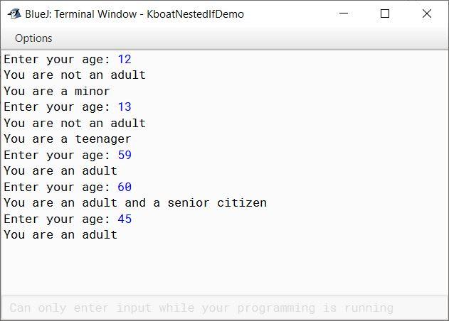 Sample Output of Java age category program