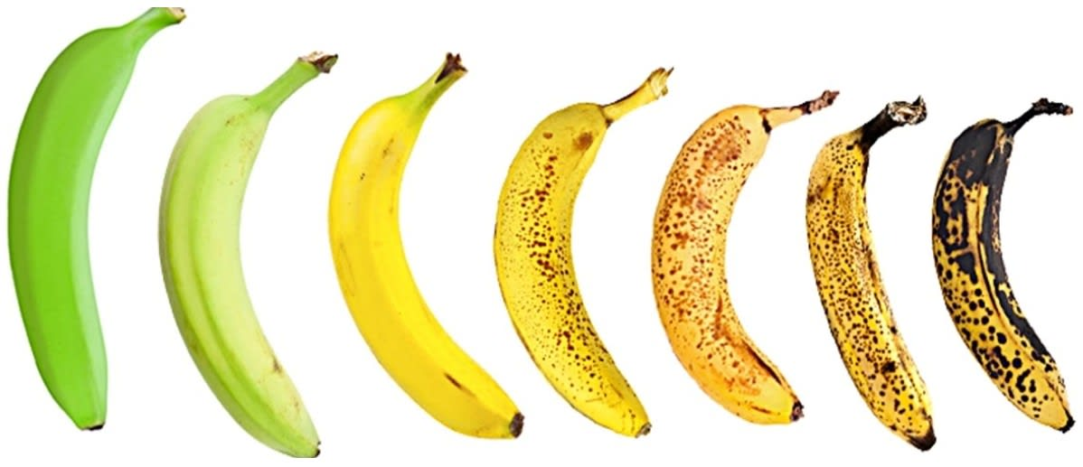 The figure shows the stages of ripening in a banana. Answer the questions that follow. Name the plant hormone responsible for the above changes. Mention two characteristic features of this hormone. Chemical Coordination in Plants, Concise Biology Solutions ICSE Class 10.
