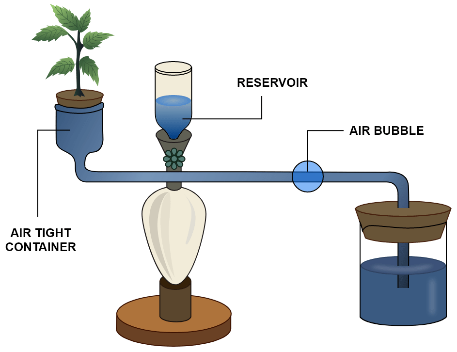 Given below is the diagram of an apparatus used to study a particular phenomenon in plants. Name the apparatus. What is it used for? What is the role played by the air-bubble in this experiment? What is the use of the reservoir? Transpiration, Concise Biology Solutions ICSE Class 10.