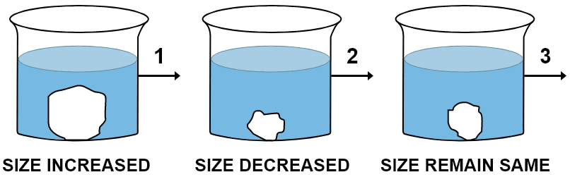 A candidate in order to study the process of osmosis has taken 3 potato cubes and put them in 3 different beakers containing 3 different solutions. After 24 hours, in the first beaker the potato cube increased in size, in the second beaker the potato cube decreased in size and in the third beaker, there was no change in the size of the potato cube. Give the technical terms of the solutions used in the beakers 1, 2 and 3. Absorption by Roots, Concise Biology Solutions ICSE Class 10.