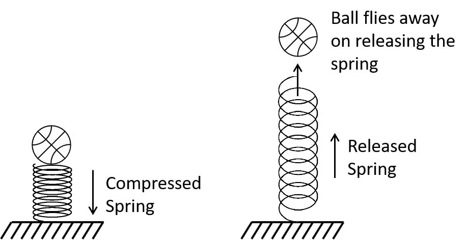 A ball is placed on a compressed spring. What form of energy does the spring possess? On releasing the spring, the ball flies away. Give a reason. Work, Energy, Power Concise Physics Class 10 Solutions.