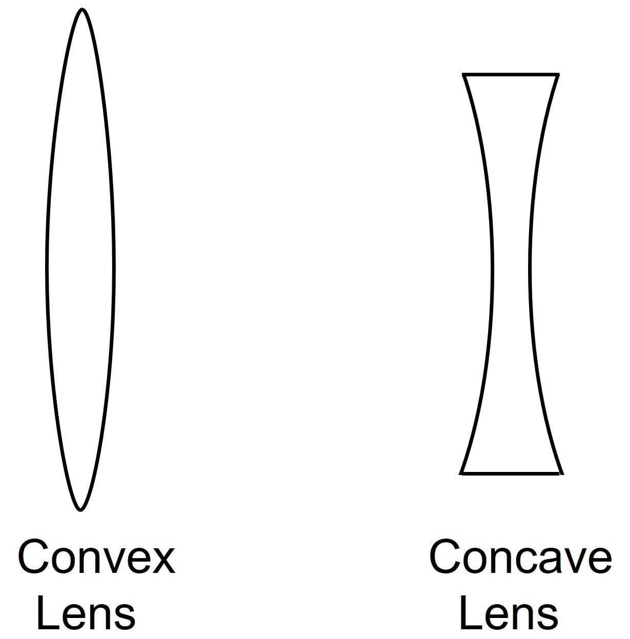 Name the two kinds of lens? Draw diagrams to illustrate them. Refraction through a lens, Concise Physics Class 10 Solutions.