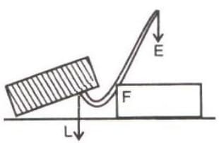 A man uses a crowbar of length 1.5 m to raise a load of 75 kgf by putting a sharp edge below the bar at a distance 1 m from his hand. Draw a diagram of the arrangement showing the fulcrum (F), load (L) and effort (E) with their directions. State the kind of lever. Calculate (i) load arm, (ii) effort arm, (iii) mechanical advantage, and (iv) the effort needed. Machines, Concise Physics Class 10 Solutions.