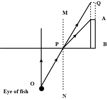 A fish is looking at a 1.0 m high plant at the edge of the pond. Will the plant appear to the fish shorter or taller than its actual height? Draw a ray diagram to support your answer. Refraction of light at plane surfaces, Concise Physics Class 10 Solutions.