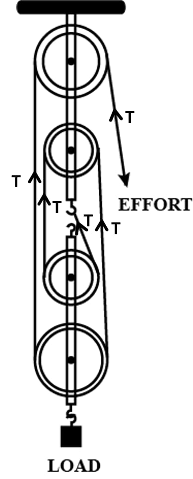 Figure shows a block and tackle system of pulleys used to lift a load. Draw arrows to represent tension T in each strand. Machines, Concise Physics Class 10 Solutions.