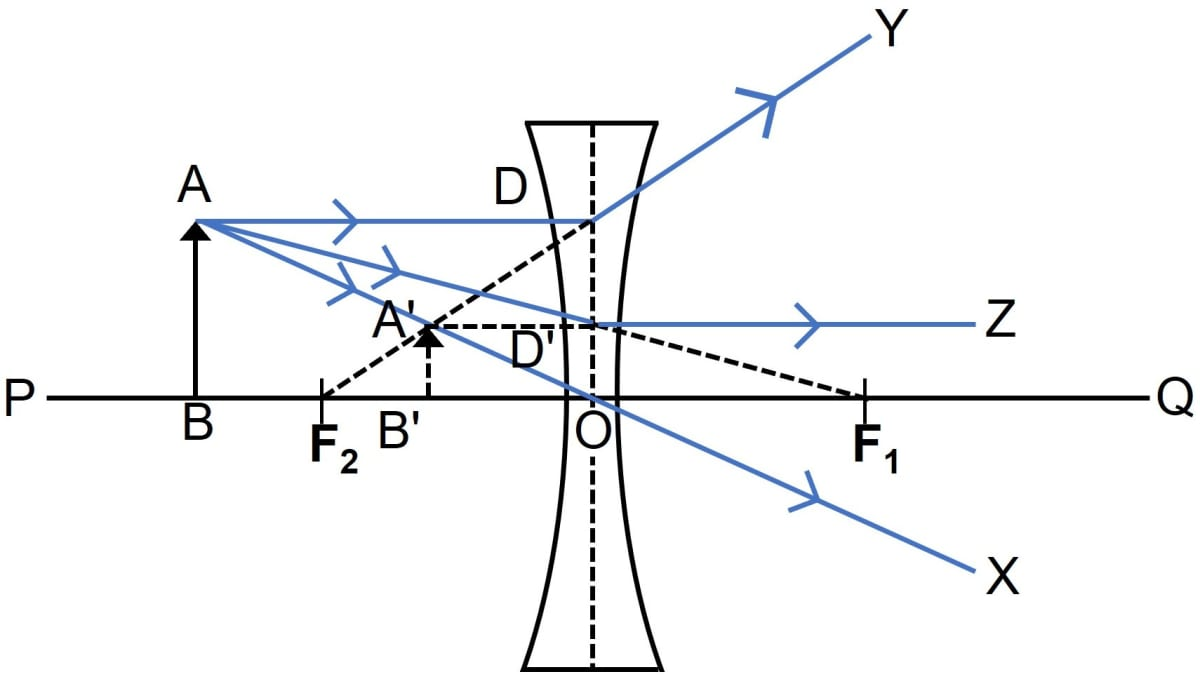 A lens forms an image between the object and the lens. Name the lens. Draw a ray diagram to show the formation of such an image. State three characteristics of the image. Refraction through a lens, Concise Physics Class 10 Solutions.