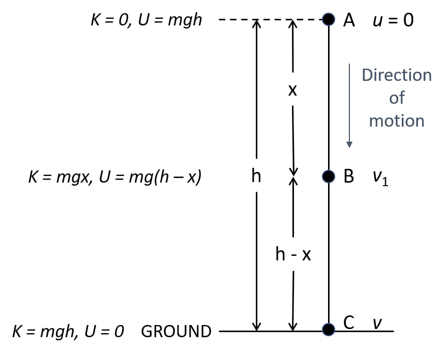 Show that kinetic energy and potential energy sum is always conserved for freely falling body under gravity. Work, Energy, Power Concise Physics Class 10 Solutions.