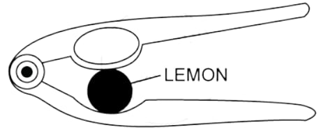 Figure shows a lemon crusher. In the diagram, mark the position of the directions of load L and effort E. Name the class of lever. Machines, Concise Physics Class 10 Solutions.