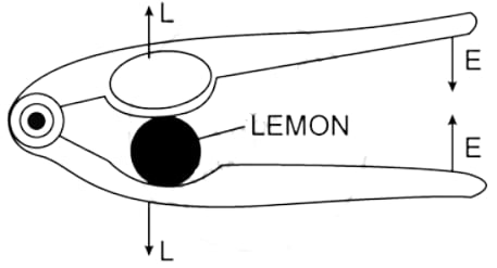 Lemon crusher with position of the directions of load L and effort E labelled. Machines, Concise Physics Class 10 Solutions.