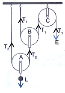 The direction of load (L), effort (E) and tension T1 and T2 in the two strings are marked in the diagram. Machines, Concise Physics Class 10 Solutions.