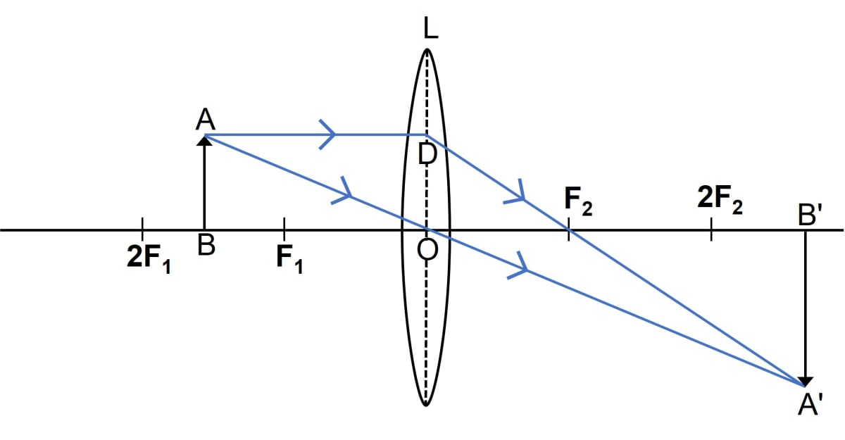 Draw a ray diagram to show how a converging lens can form a real and enlarged image of an object. Refraction through a lens, Concise Physics Class 10 Solutions.