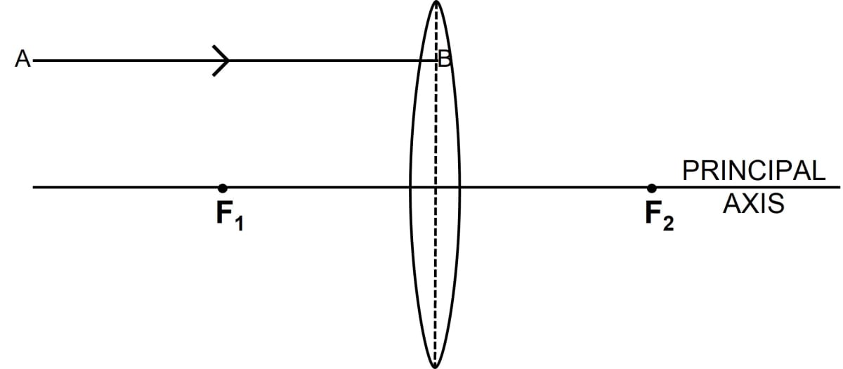 In figure (a) and (b), F1 and F2 are  the positions of the two foci of thin lenses. Draw the path taken by the light ray AB after it emerges from each lens. Refraction through a lens, Concise Physics Class 10 Solutions.
