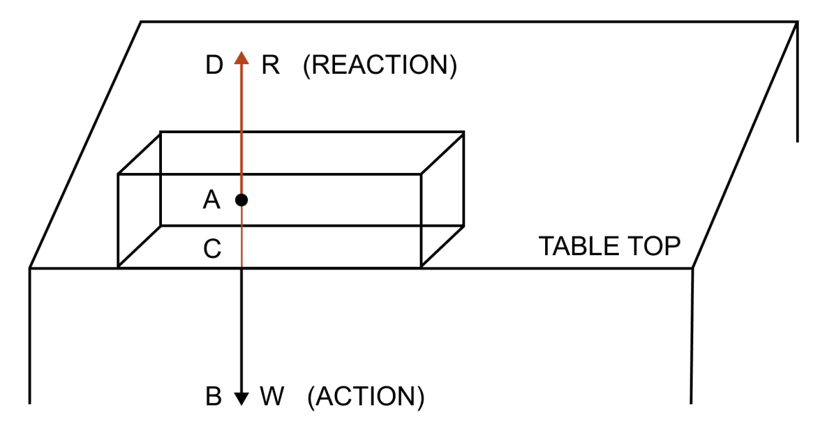 Name and state the action and reaction force when a book is lying on a table. Laws of Motion, Concise Physics Solutions ICSE Class 9.