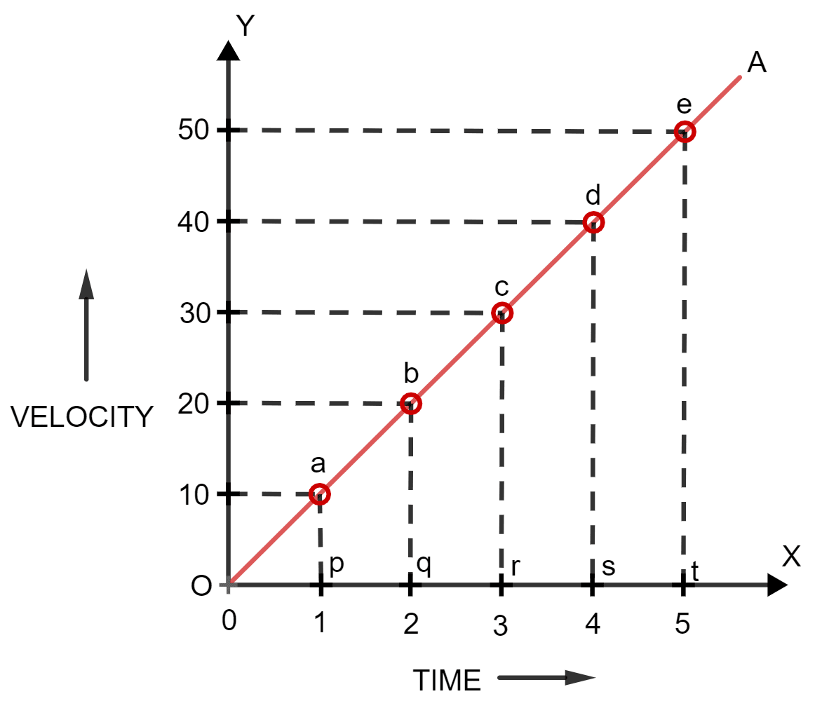 Draw a velocity-time graph for the free fall of a body under gravity, starting from rest. Motion in one dimension, Concise Physics Solutions ICSE Class 9.