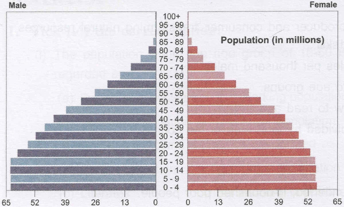Give one point of difference in the population pyramid of India and Japan. Population Dynamics, Goyal Brothers Prakashan Geography by Veena Bhargava Solutions ICSE Class 8