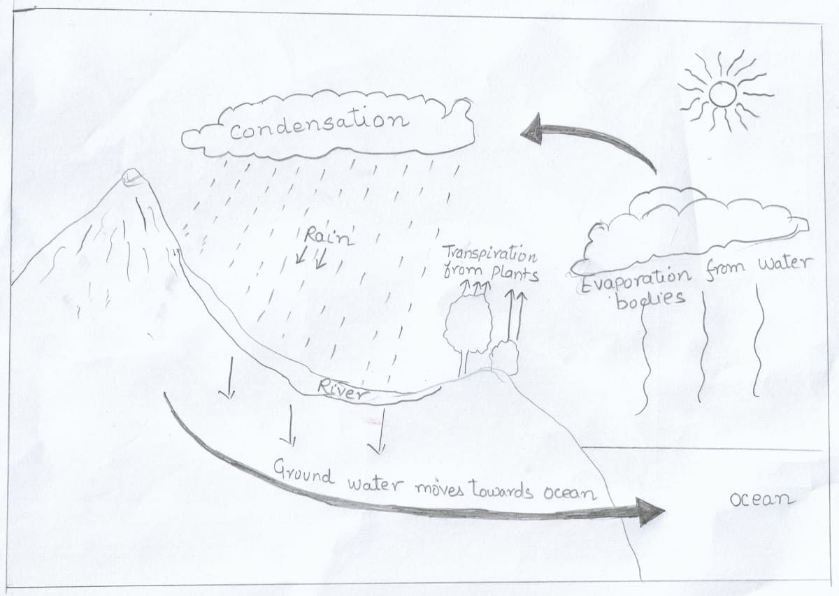 Draw a well labelled diagram to show the cyclic circulation of water between the three realms of the earth. Total Geography ICSE Class 9