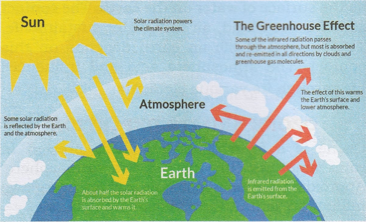 Draw a well labelled diagram to explain the Greenhouse Effect. Composition and Structure of Atmosphere, Total Geography ICSE Class 9 Solutions.