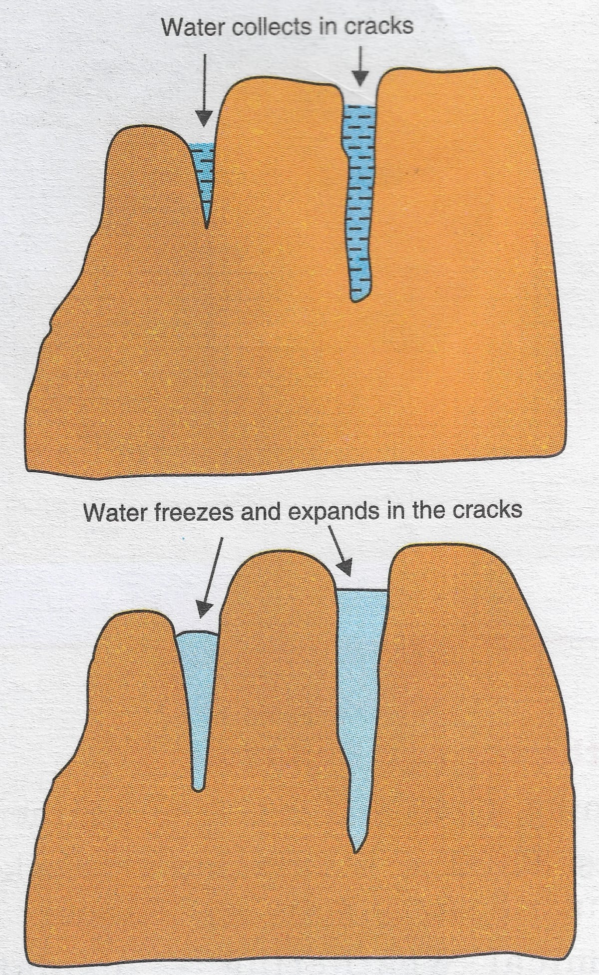 Draw a well labelled diagram to show the process of physical weathering. Weathering, Total Geography Solutions ICSE Class 9.