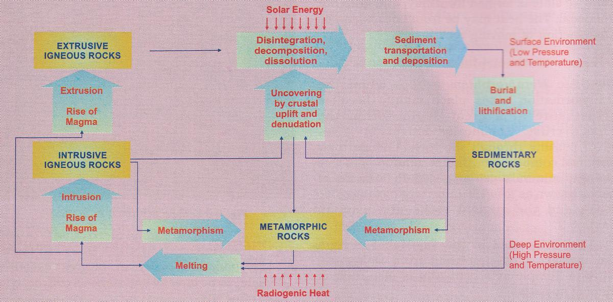 Draw a well labelled diagram of Rock Cycle. Rocks, Total Geography ICSE Class 9.